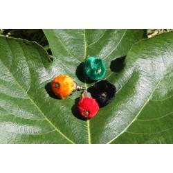 Lot de 4 pompons ronds orange, noir, vert ou rouge